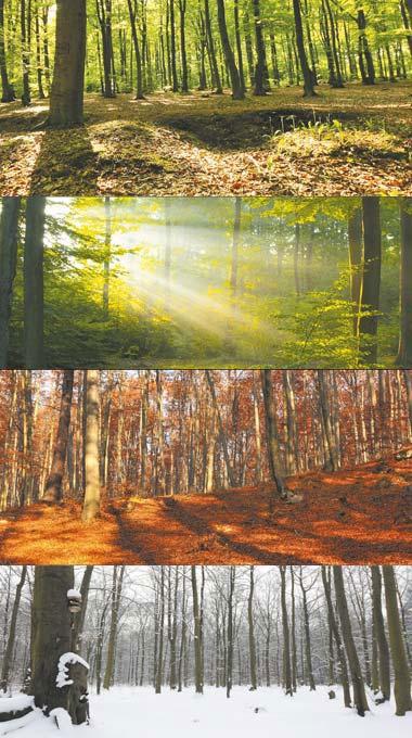 climatisation-reversible-saisons